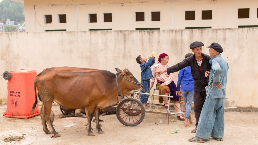 Daily Life In Vietnam - The North project video thumbnail
