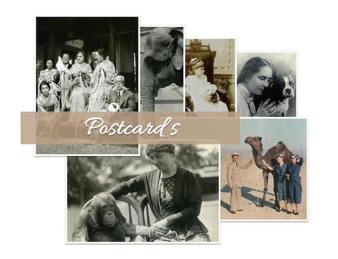 Keller and Animal Friends, 6 Unique Printed Photo Postcards, Pledge Reward @ $50.