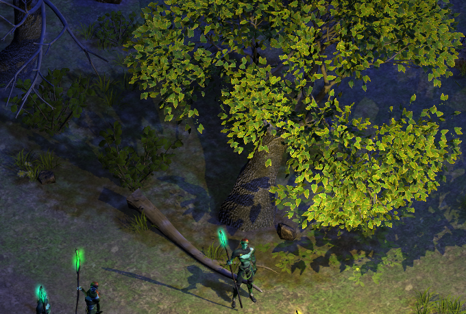 Forests are a great place to collect herbs, but rare ones may be guarded by locals.