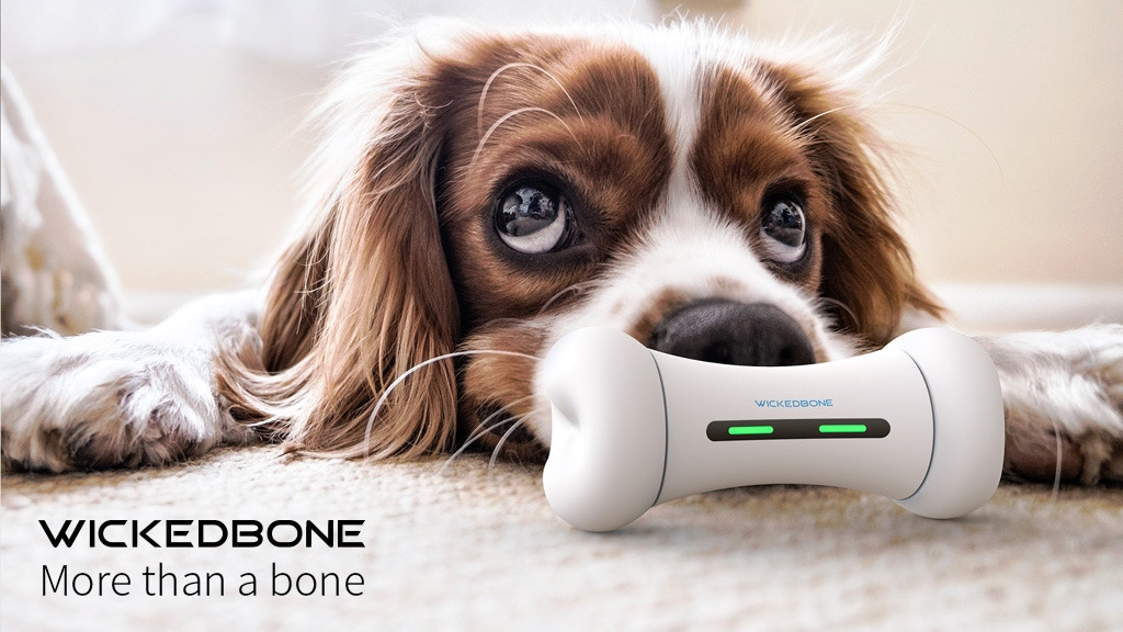 WICKEDBONE: World's First Smart & Interactive Dog Toy