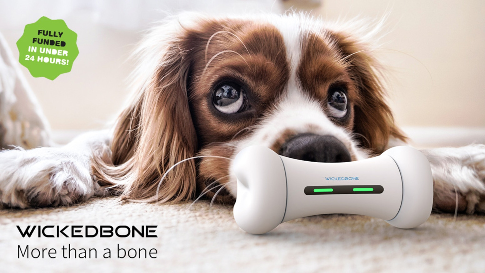 WICKEDBONE: World's First Smart & Interactive Dog Toy is the top crowdfunding project launched today. WICKEDBONE: World's First Smart & Interactive Dog Toy raised over $91306 from 933 backers. Other top projects include PIXU TABLE™ - LEGO® Compatible table with 23 color blocks, Good Vibes Only, Webseries development - Safety R.O.C.K.S. Live!...