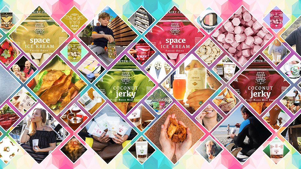 Seva Foods Vegan Organic Space Ice Kream and Coconut Jerky project video thumbnail