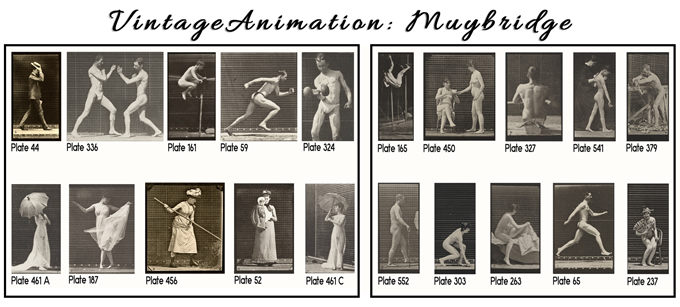 Vintage Animation Muybridge motion studies, cells and strips (some framed), acetate. U-Pick by Plate Number. 2 sets per Pledge @ $75.