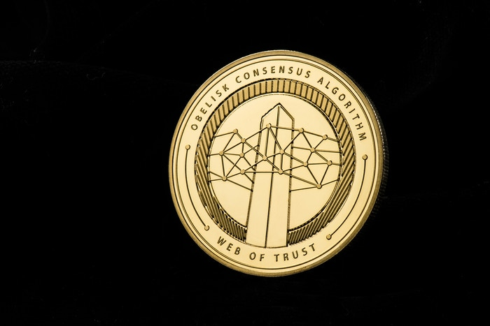 Physical Skycoin Limited Edition Collectable Coin by Jules