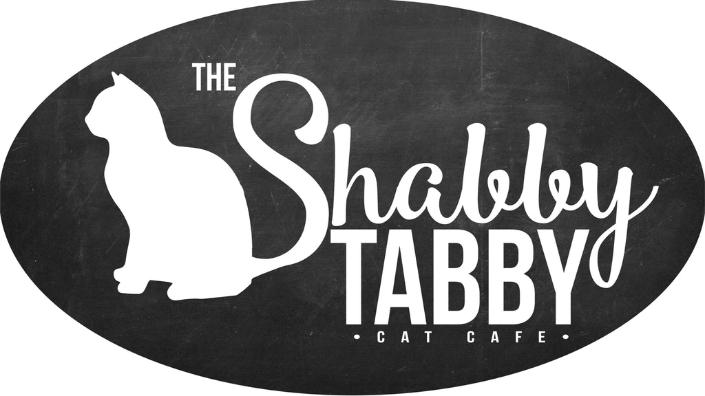 The Shabby Tabby- Long Island's FIRST Cat Cafe project video thumbnail