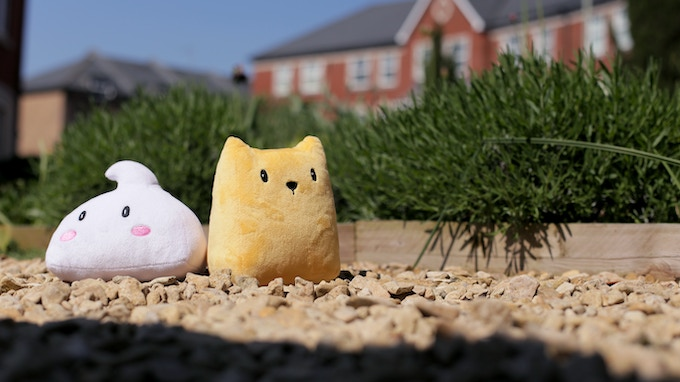 Cat and Meringue out and about in town!