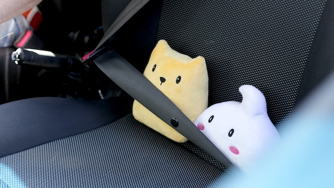 Make sure you strap them in if you take them anywhere!