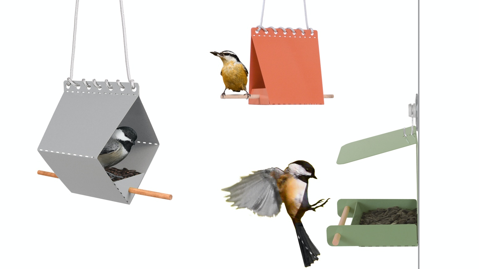 The bird feeders that arrive flat and fold together easily - loved by birds everywhere!
