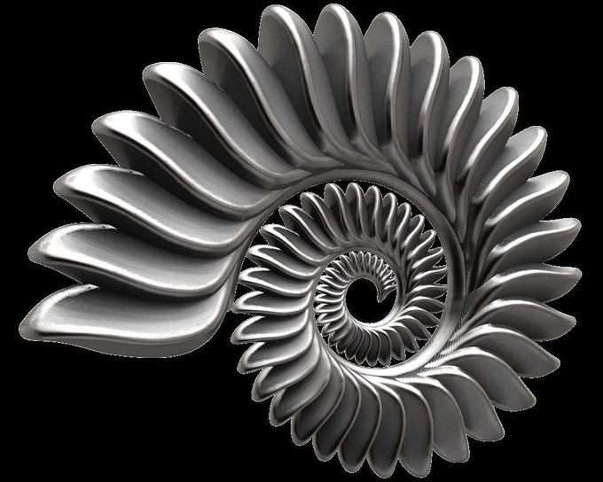 Helicoprion tooth whorl computer rendering. 3 to 3.5 cm diameter.