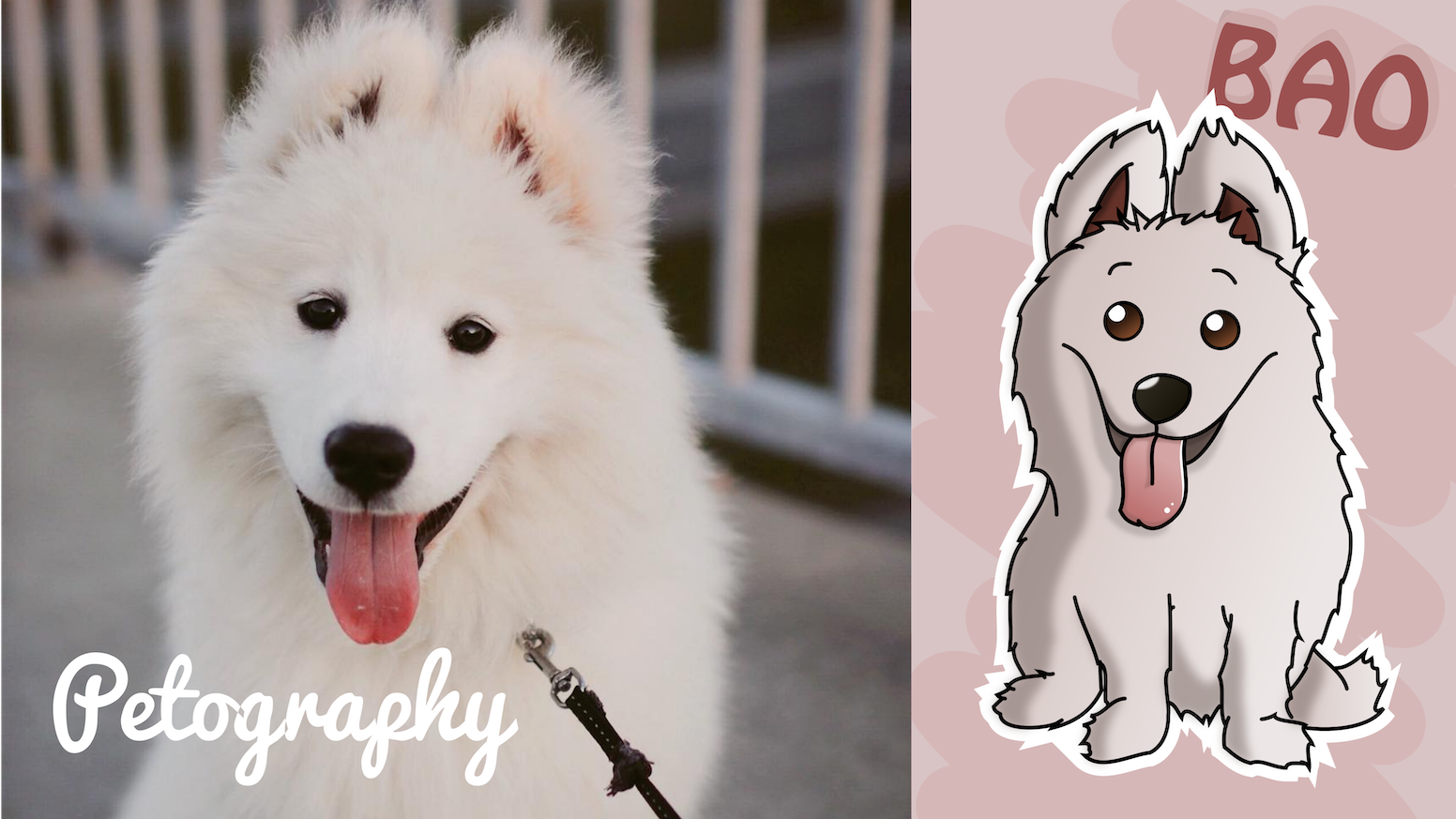 petography illustrations of your pet by qb kickstarter