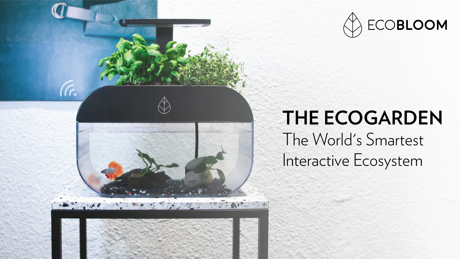 A smart miniature greenhouse and self-sustaining aquarium.