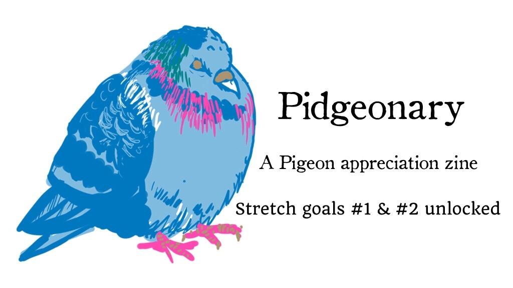 Pidgeonary- a pigeon appreciation zine