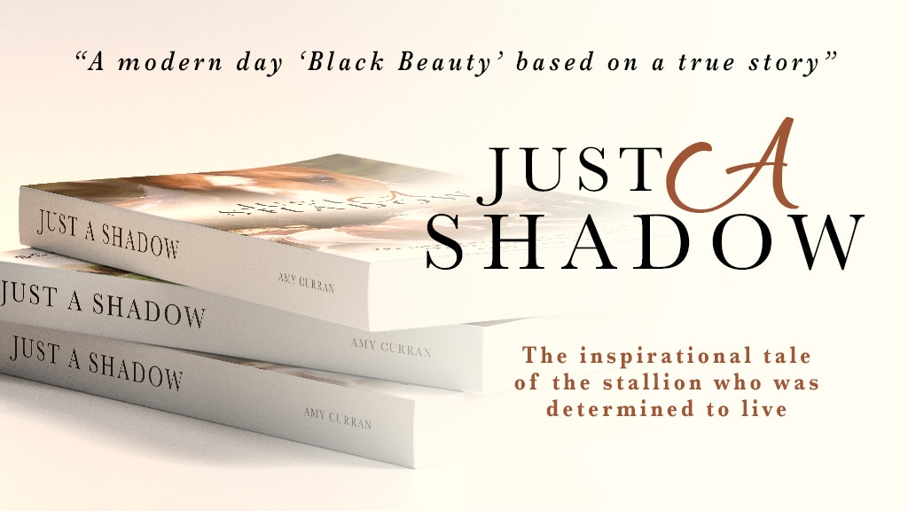 'Just A Shadow' the Novel