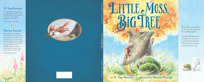 A Mockup of the Dust Jacket
