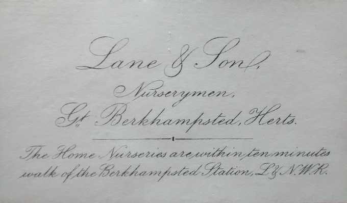 Business card of Lane & Sons from the Museum archive