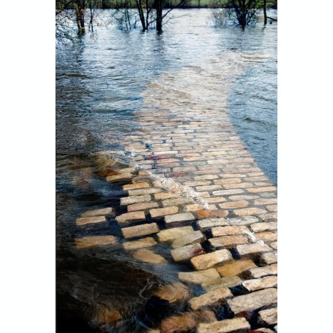 Untitled (yellow brick road)