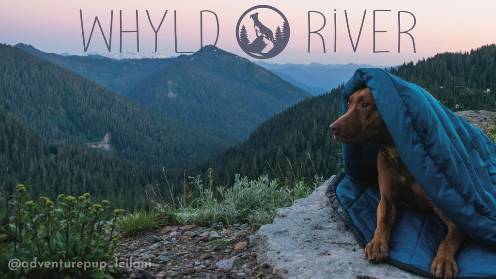 Whyld River's DoggyBag | A Premium Sleeping Bag for Your Dog project video thumbnail
