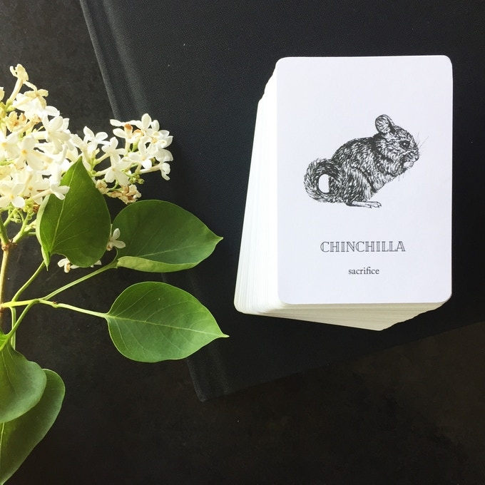 examples of both the oracle deck and the black linen hardcover