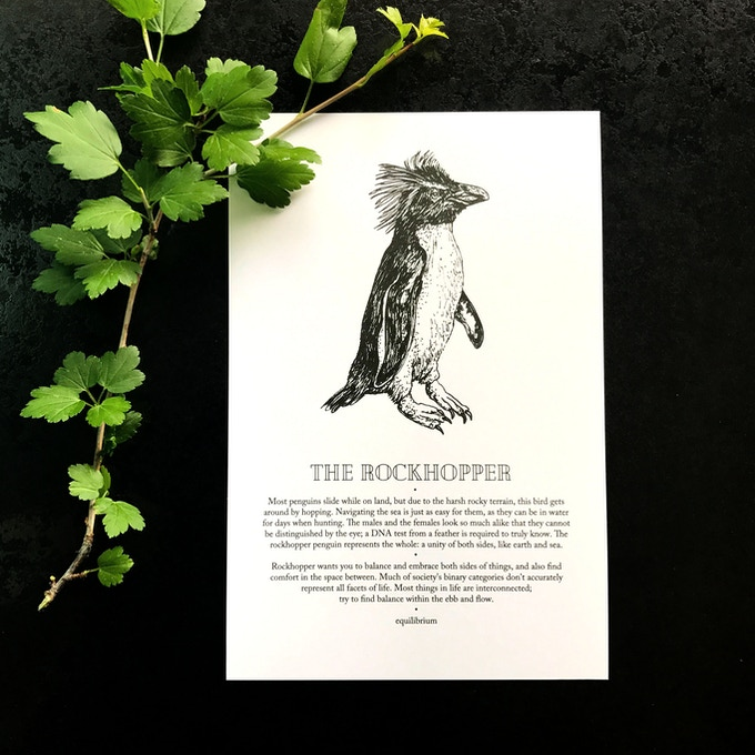 a sample book page featuring the rockhopper penguin
