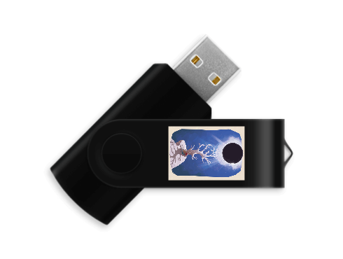 1 GB Flash Drive contains Studio Video, Concert Video, Artwork Wallpapers, and the live recording from our VGM concert summer of 2017