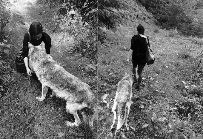 The Wolf and I