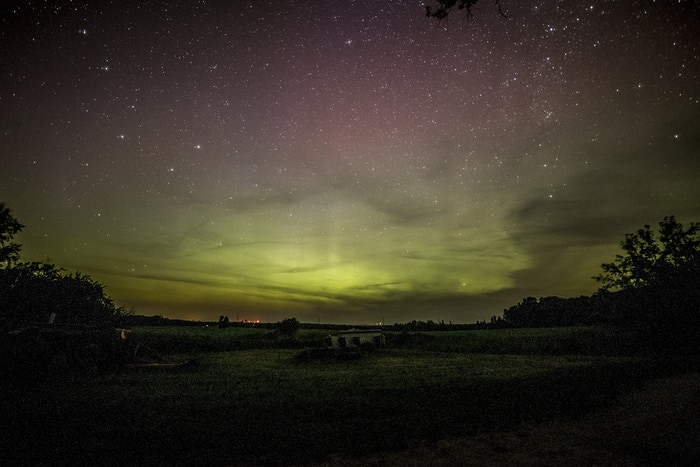 The Aurora on August Haven Farm