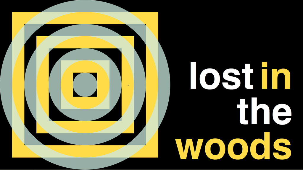 Help LOST IN THE WOODS release CAMPFIRE RADIO on LP and web project video thumbnail