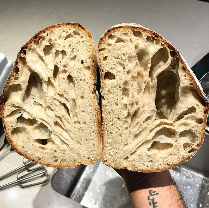 Whole-wheat sourdough crumbshot