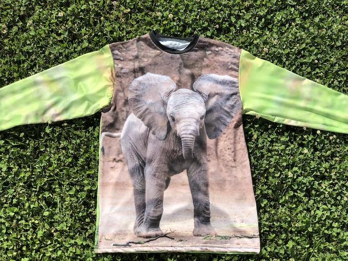 Elephant (front & back)