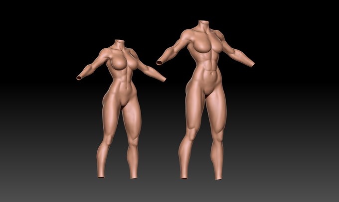 Sculpted view of Athletic (Left) & Tall Body