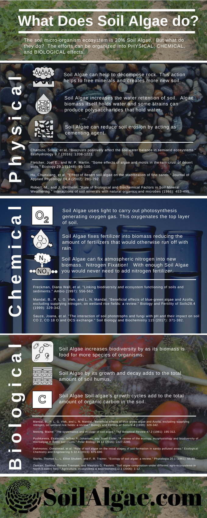 Soil Algae Infographic, why it works