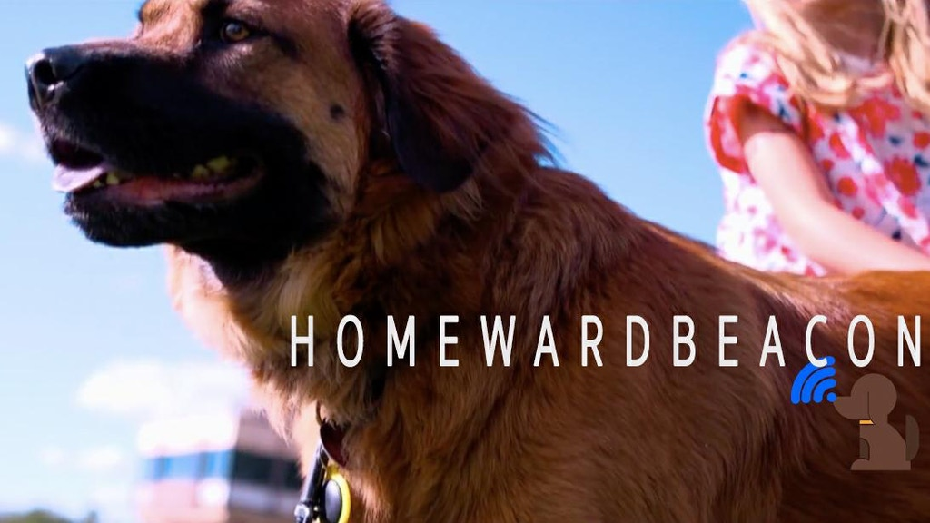 Homeward Beacon: A Bluetooth pet tag helping lost pets home