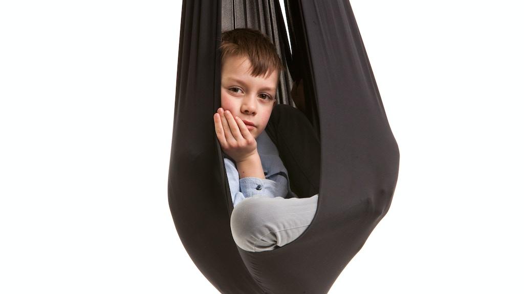 Kodvi swing! Sit,Stay,Lie,Jump,Relax!