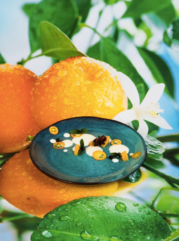 Gewürzorangen und Kumquats mit Mascarponecreme