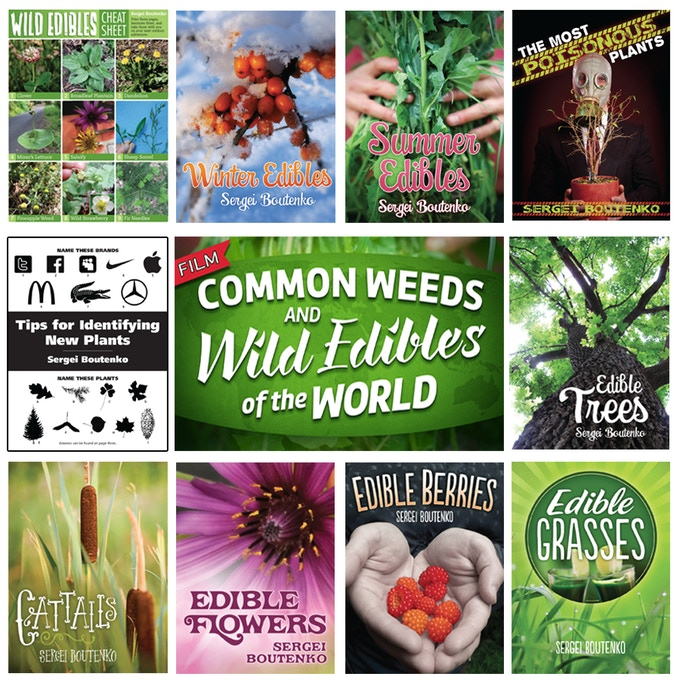 Wild Edibles DVD and 10 ebooks