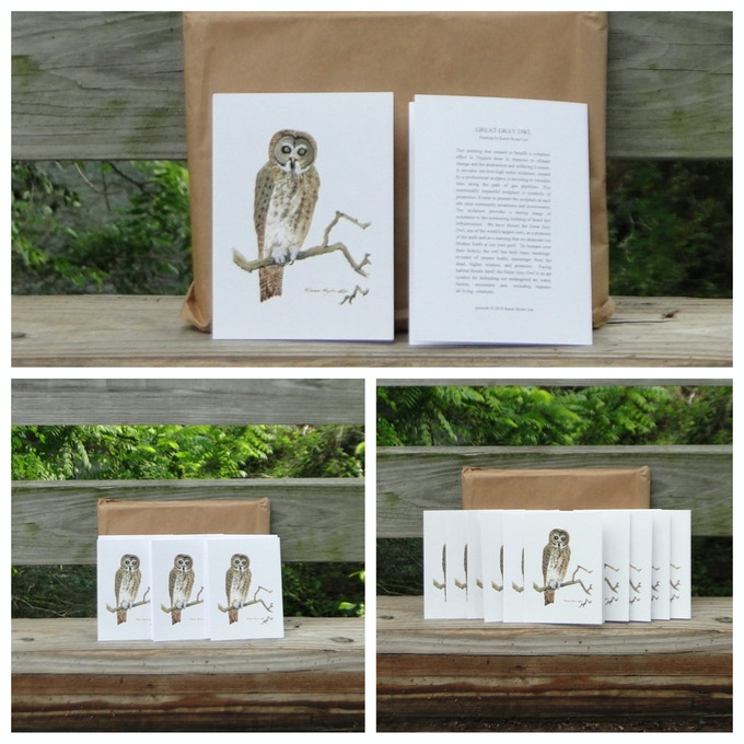 Great Gray Owl Greeting cards to send well-wishes to loved ones or share this project with friends and neighbors!