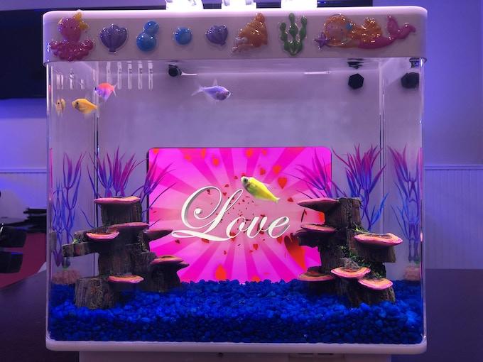 IQUARIUM, a mini aquarium that uses an iPad as the backdrop by Eddie ...