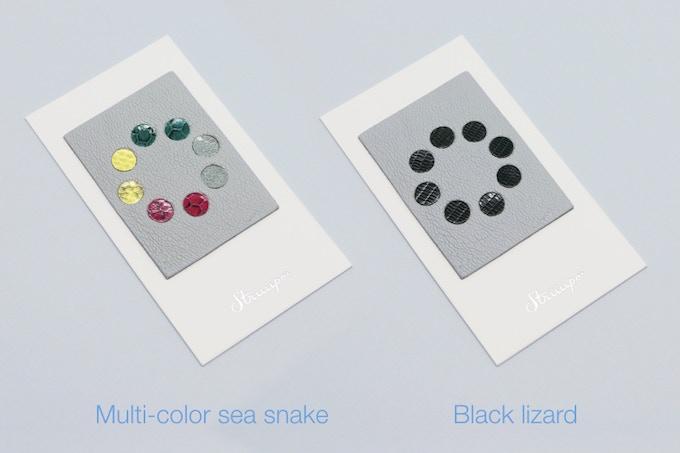 Multi color sea snake and black lizard
