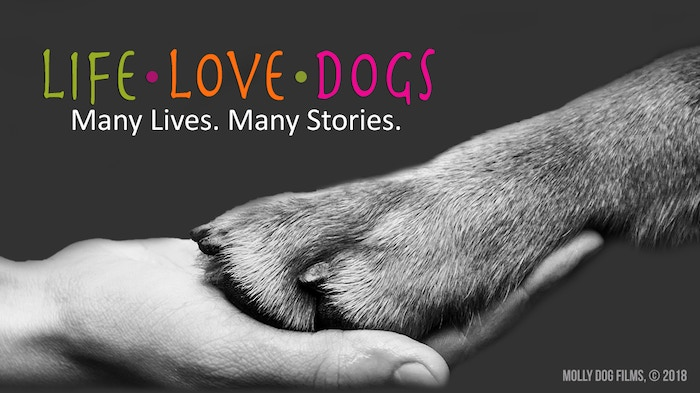 LIFE·LOVE·DOGS - A Documentary