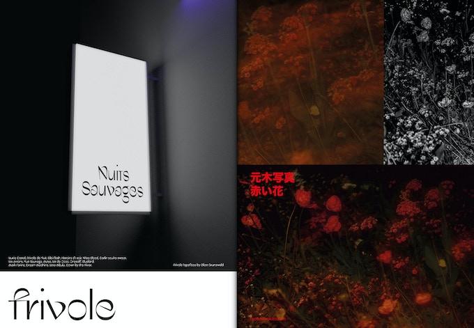 Contributions d'auteurs (sous forme de page publicitaire) mise en page par Revue Diorama Studio