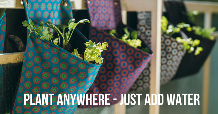 The complete kits enable anyone to grow food anywhere. Plant the paper and add water! You buy one, we give one to a person in need.
