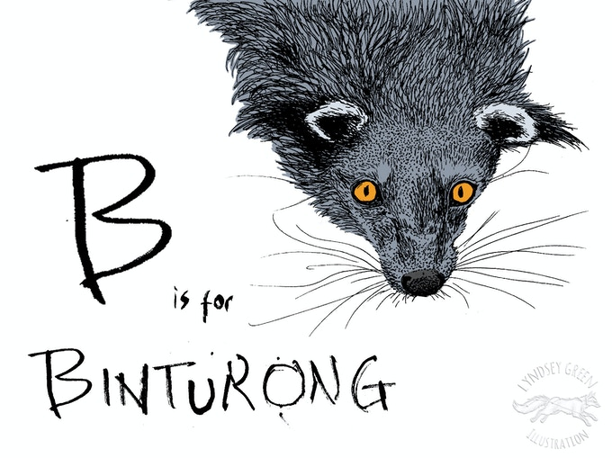 First Draft 'B is for Binturong' from 2012