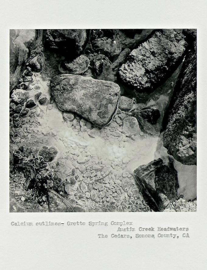 """Calcium outlines"", Grotto Spring Complex, Austin Creek Headwaters, The Cedars, Sonoma County, California, ©2014 Deanna Miesch"
