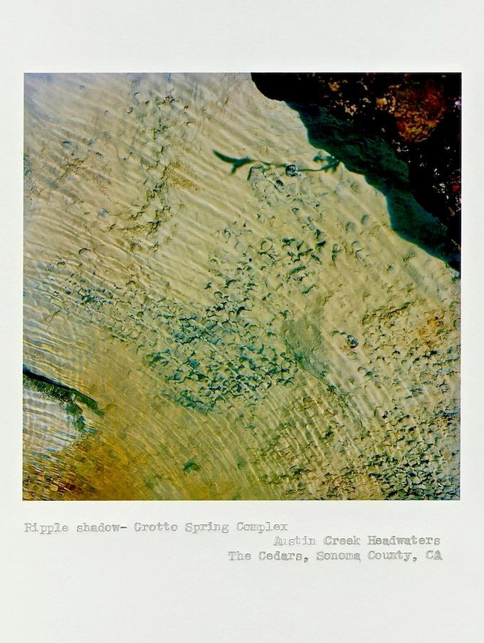 """Ripple shadow"", Grotto Spring Complex, Austin Creek Headwaters, The Cedars, Sonoma County, California, © 2014 Deanna Miesch"