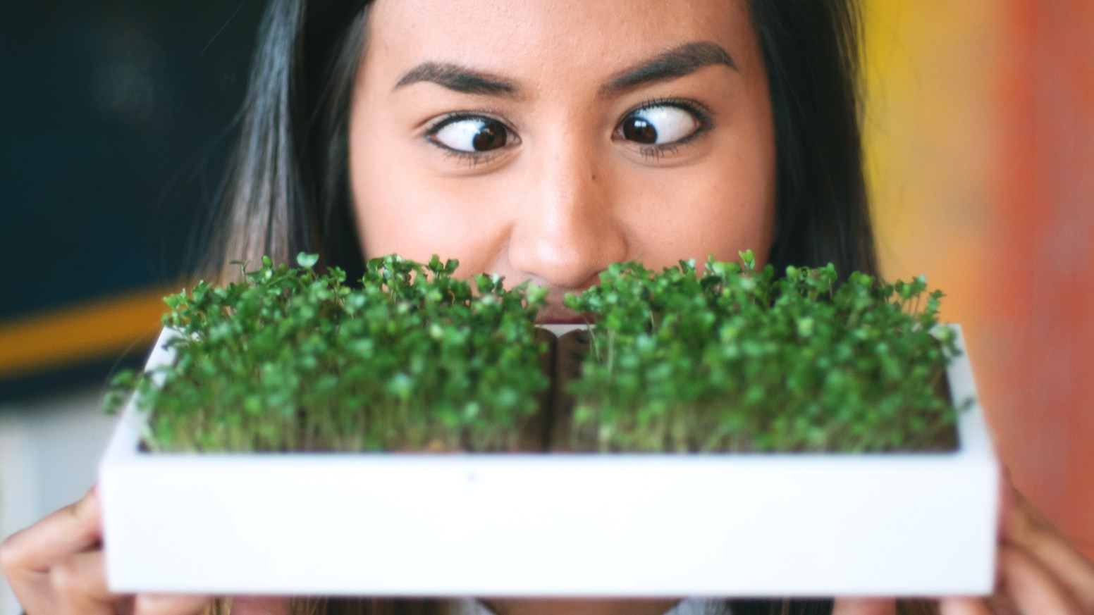 Compact, Sustainable Home MicroGarden. HomeGrown Veggies Up to 40x MORE Nutritious, Affordably, and Easily.
