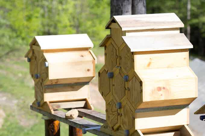 Honeycomb Fold-Hives provide easy access for faster hive inspections