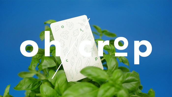Oh/crop is a beautifully designed card game – you can plant! Grow your skills or grow some seeds.