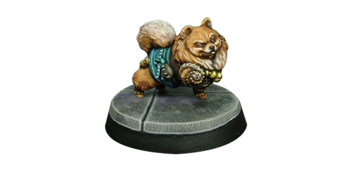 Nightingale the Pomeranian Monk