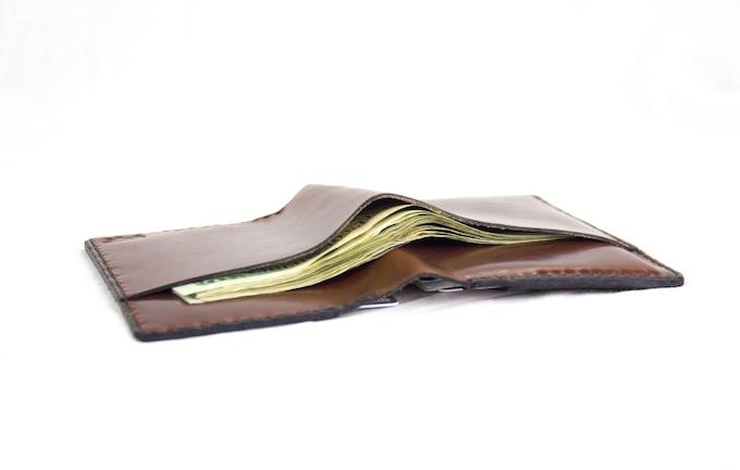 The Diplomat Travel Wallet: Front Pocket