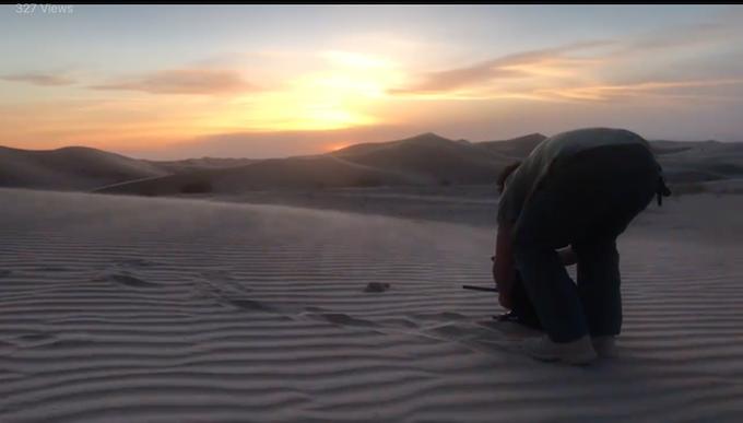 Shooting lethal snakes in desert © Alex Jones